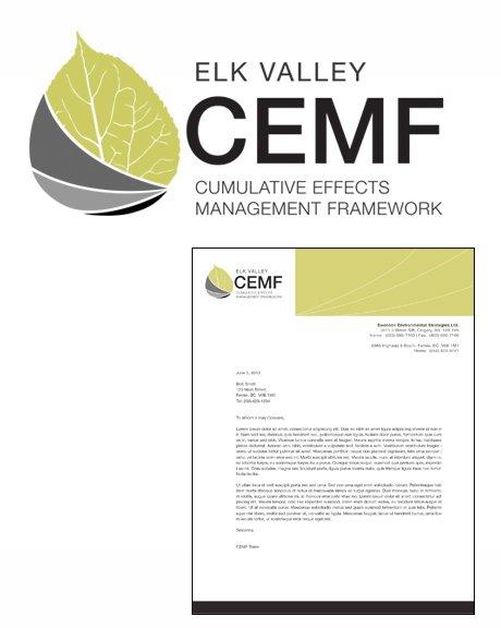 master-CEMF-1